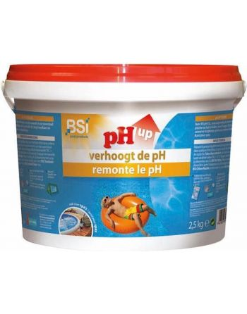 pH Up 2,5 kg - verhoogt de...